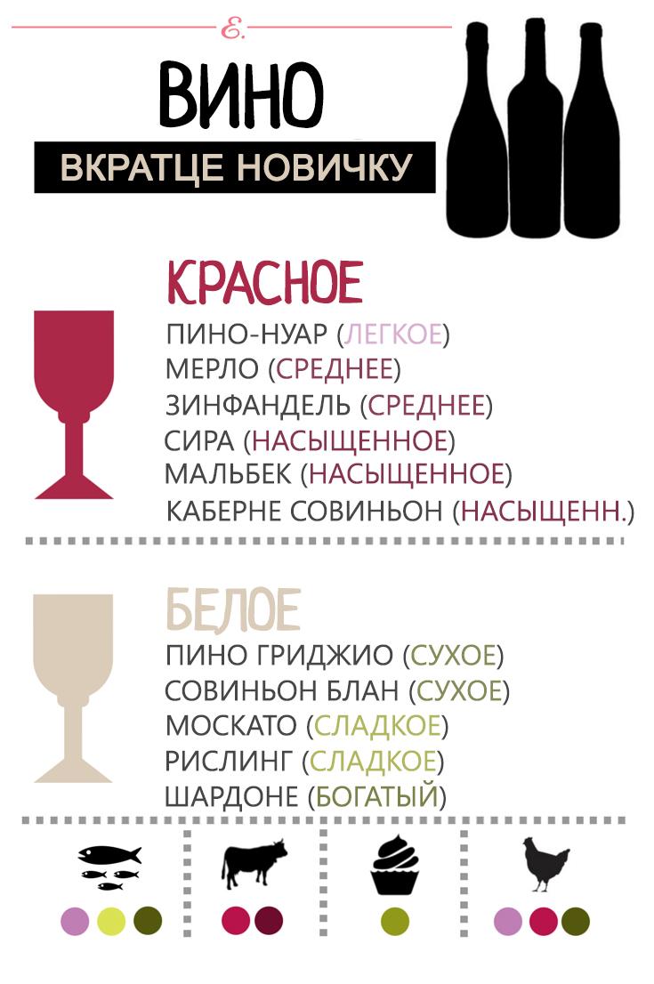Виды вина для новичка